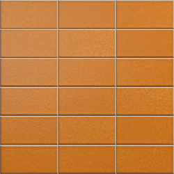 Anthologhia Alchechengi | Keramik Mosaike | Appiani
