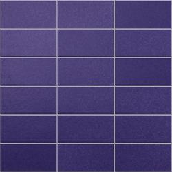 Anthologhia Iris | Mosaike | Appiani