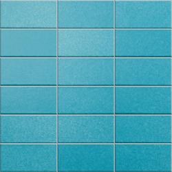 Anthologhia Glauca | Mosaics | Appiani
