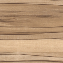 Expona Design - Blond Indian Apple Wood Smooth | Suelos de plástico | objectflor