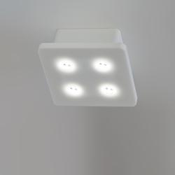 Born 2B LED 12 WL/DL | Lampade plafoniere | MOLTO LUCE