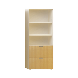 Fe2 H200 L80 Cabinet | Office shelving systems | Nurus