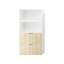 Fe2 H160 L80 Cabinet | Office shelving systems | Nurus