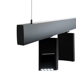 X - Line SL | Suspended lights | MOLTO LUCE