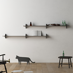 Hylas | Shelves | AL2698