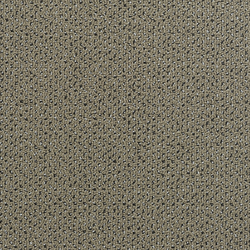 Concept 506 - 90 | Wall-to-wall carpets | Carpet Concept