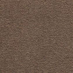 Maja | Milk Chocolate 808 | Wall-to-wall carpets | Kasthall