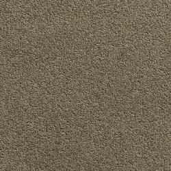 Concept 505 - 115 | Wall-to-wall carpets | Carpet Concept