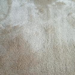 Coboll | Rugs / Designer rugs | JoV
