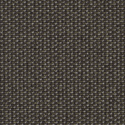 Lay 6949 | Moquetas | Carpet Concept