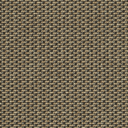Lay 7155 | Carpet rolls / Wall-to-wall carpets | Carpet Concept