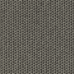 Lay 53370 | Moquetas | Carpet Concept