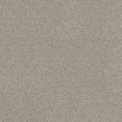 Polichrome 7559 Concrete | Dalles de moquette | Interface