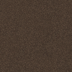 Polichrome 7565 Burnt Umbra | Carpet tiles | Interface