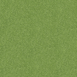 Polichrome 7597 Sycamore | Carpet tiles | Interface
