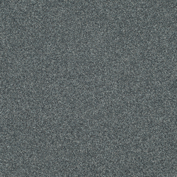 Polichrome 7556 Chinchilla | Carpet tiles | Interface