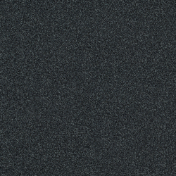 Polichrome 7557 Anthracite | Dalles de moquette | Interface