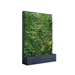 Grüne Wand® Panel Edition 164 | Space dividers | art aqua