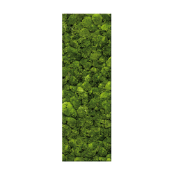 PARETE VERDE® mobil | Wall decoration | art aqua