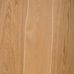 Veneer Surcafe Oak with maple inlay | Wood veneers | Boleform