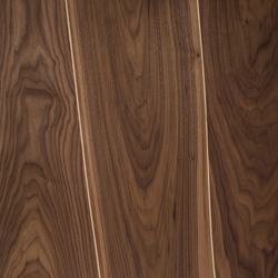 Veneer Surface Walnut with Maple Inlay | Wood veneers | Boleform