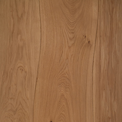 Veneered panel Oak for furniture manufacturing beveled | Wood veneers | Boleform