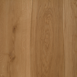 Veneered panel for furniture manufacturing Oak non-beveled | Wood veneers | Boleform
