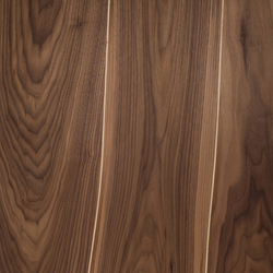 Veneered panel for furniture manufacturing Walnut with maple inlay | Wood veneers | Boleform