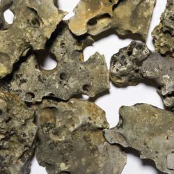Zierkies | Splitte, Kalklochgestein | Pebble stones | Metten