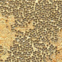 Beadazzled Leaf™ Golda Leaf | Wall coverings | Maya Romanoff Corp.