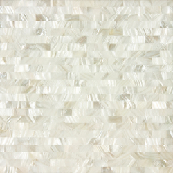 White Rivershell Field Tile | Mosaïques murales | Artistic Tile