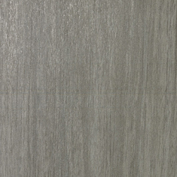 Metalwood argento | Floor tiles | Casalgrande Padana