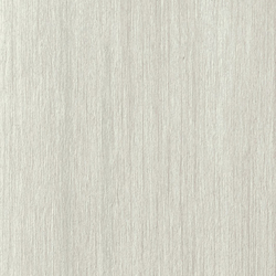 Metalwood platino | Floor tiles | Casalgrande Padana
