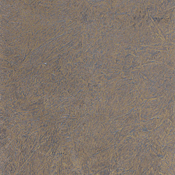 Porphyry Golden/Silver wallcovering | Wall coverings / wallpapers | yangki