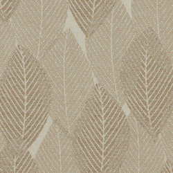 Branch Out Dove | Fabrics | Burch Fabrics