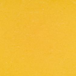 Colorette LPX 131-001 | Linoleum flooring | Armstrong