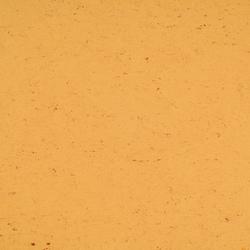 Colorette LPX 131-073 | Linoleum flooring | Armstrong