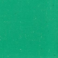 Colorette LPX 131-131 | Linoleum flooring | Armstrong