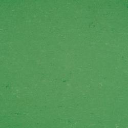 Colorette LPX 131-006 | Linoleum flooring | Armstrong