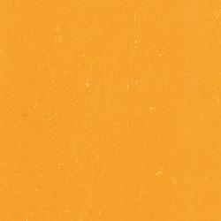 Colorette LPX 131-171 | Linoleum flooring | Armstrong