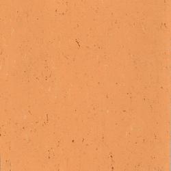 Colorette LPX 131-078 | Linoleum flooring | Armstrong