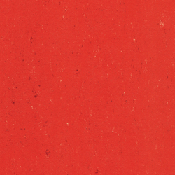 Colorette LPX 131-118 | Linoleum flooring | Armstrong