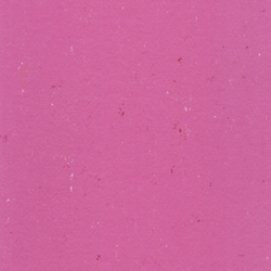 Colorette LPX 131-110 | Linoleum flooring | Armstrong