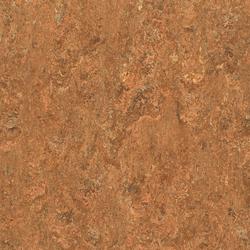 Linorette PUR 127-060 | Linoleum flooring | Armstrong