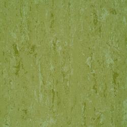 Linodur LPX 151-011 | Linoleum flooring | Armstrong