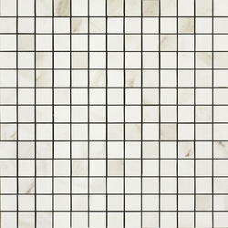 Evolutionmarble | Mosaïques | Marazzi Group