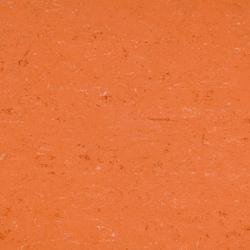 Colorette LPX 131-016 | Linoleum flooring | Armstrong