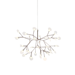 heracleum II small | Iluminación general | moooi