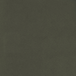 Santa Fe LW 370 67 | Curtain fabrics | Elitis