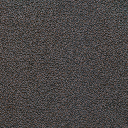 Anguille big croco galuchat | Galuchat VP 421 27 | Wall coverings / wallpapers | Elitis